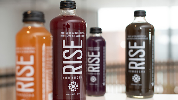 First bottling line for RISE Kombucha