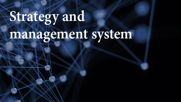Strategy and management system